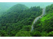 కొట్టాయం -  ప్రకృతిలో ఒక అద్భుత ప్రదేశం !