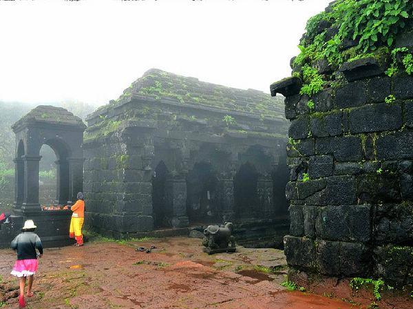 Image result for కృష్ణా నది లోయ( ఆంధ్రప్రదేశ్)