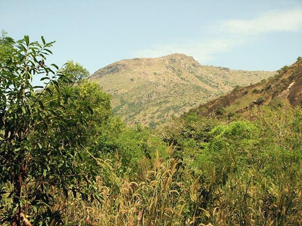 ఉదయగిరి కొండపై సుదర్శన చక్ర దర్శనం - బ్రహ్మంగారి కాలజ్ఞానం