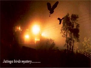 Top Mysterious Places India