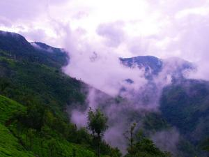 The Essential Coonoor Travel Guide