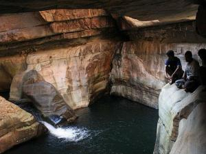 Places Visit Seshachalam Forest Andhra Pradesh