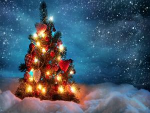Top Christmas Destinations India Celebration