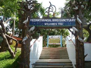 Trip To Oldest Bird Sanctuary Vedanthangal