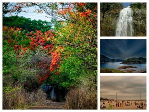 Summer Destination Places In South India