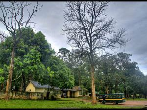 Top Things To Do In Coorg