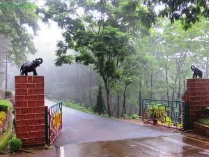 Popular Wildlife Sanctuaries In Goa