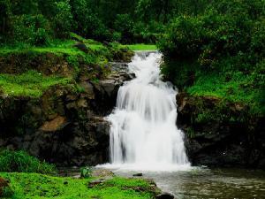 Things To Do In Kamshet Maharashtra