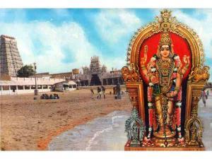 Six Abodes Of Lord Murugan Tamil Nadu