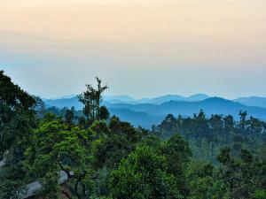 Bangalore To Sakleshpur Road Trip Journey
