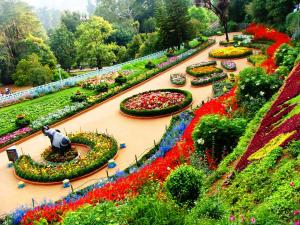 Some Beautiful Gardens Ooty