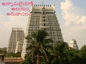 Top Tallest Gopurams In India