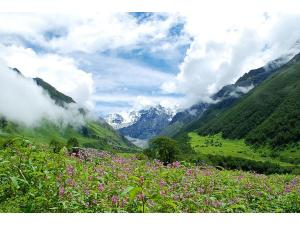 Valley Of Flowers National Park Trek Uttarakhand