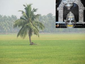 Must Visit Places Bhimavaram West Godavari