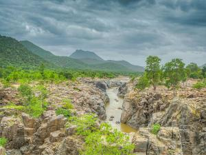 A Day Trip From Bangalore Hogenakkal Waterfalls
