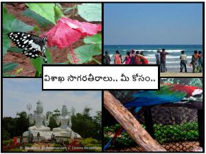Best Beaches Vizag