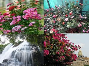 Best Places Visit Bangalore