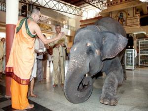 Famous Shiva Temple Trichy Thiruvanaikaval