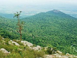 Places Visit Biligiriranga Hills