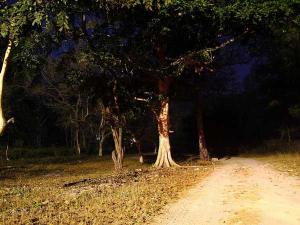 Haunted Road Routes India