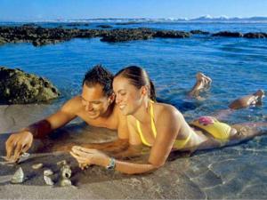 Famous Beaches Goa