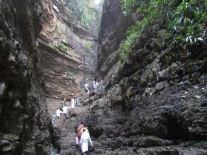 Nallamala Hills Telangana