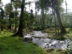 Romantic Places India
