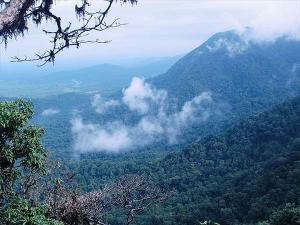 Places To Explore In The Western Ghats