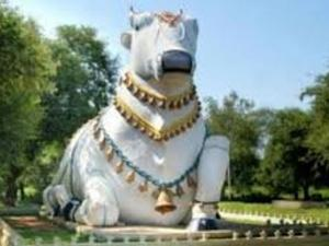 Facts About 9 Nandi Temples And Mahanandi