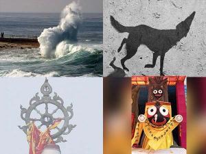 Miracles At Puri Jagannath Temple Telugu