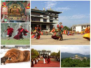 Have You Seen Tibet Near Andhra It Is Called Mini Tibet