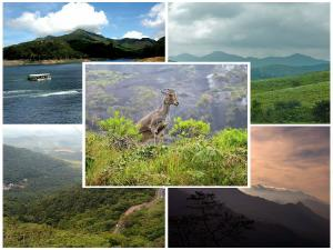 Did You See Top 5 Hill Stations Kerala