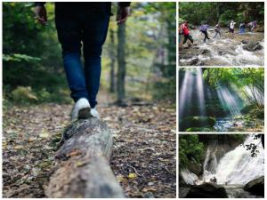 Waterfall Treks Goa Monsoon That Will Leave You Spellbound