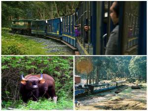 Nilgiri Mountain Railway Booking Timings Ticket Fare
