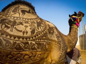 Pushkar Fair 2018 History Schedule How Reach
