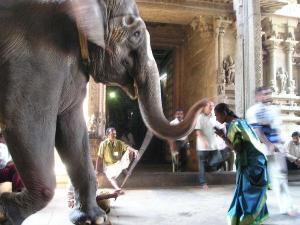 Sahasra Lakshmeeswarar Temple Theeyathur History Timings
