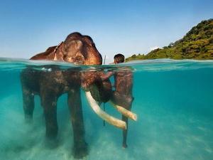 Mayabunder Island Places Visit Things Do
