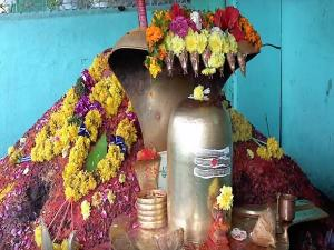 Mopidevi Temple Naga Dosha Parihar Getting Marriage