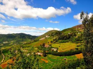 Best Places Visit Ooty