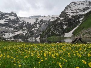 Pulwama Jammu Kashmir Places Visit How Reach