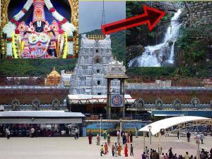 Akasha Ganga Theertham Waterfall Tirumala