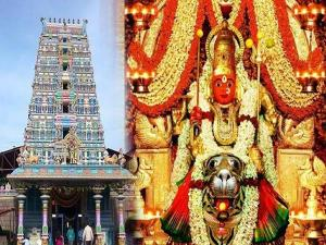 Peddamma Temple Jubilee Hills Hyderabad History Timings