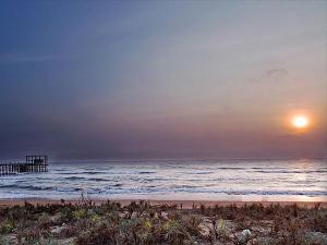 Mypadu Beach In Nellore Travel Guide Attractions And How
