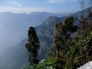 Coonoor Silent Valley The Nature