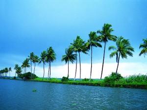 The Top 10 Tourist Spots Kerala