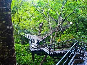 Places To Visit Around Punalur