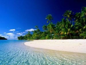 Places To Visit In Mararikulam In Kerala