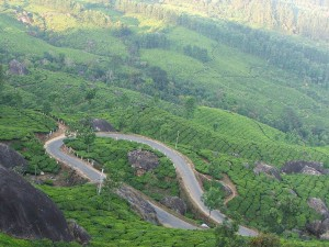 Road Trip From Chennai To Munnar