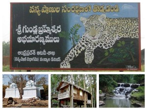 Tourist Places Near Gundla Brahmeswaram Wildlife Sanctuary