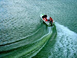 Places To Visit In Devikulam In Kerala